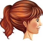 Facial perfil derecho